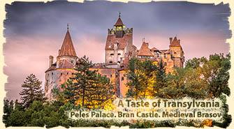Bucharest day trip - Transylvania Castles