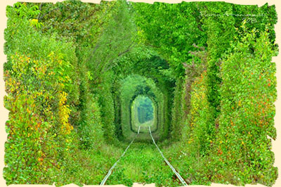 Tunnel of Love Romania